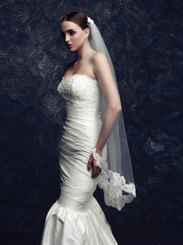 Elegant Tulle With Lace Wedding Veils